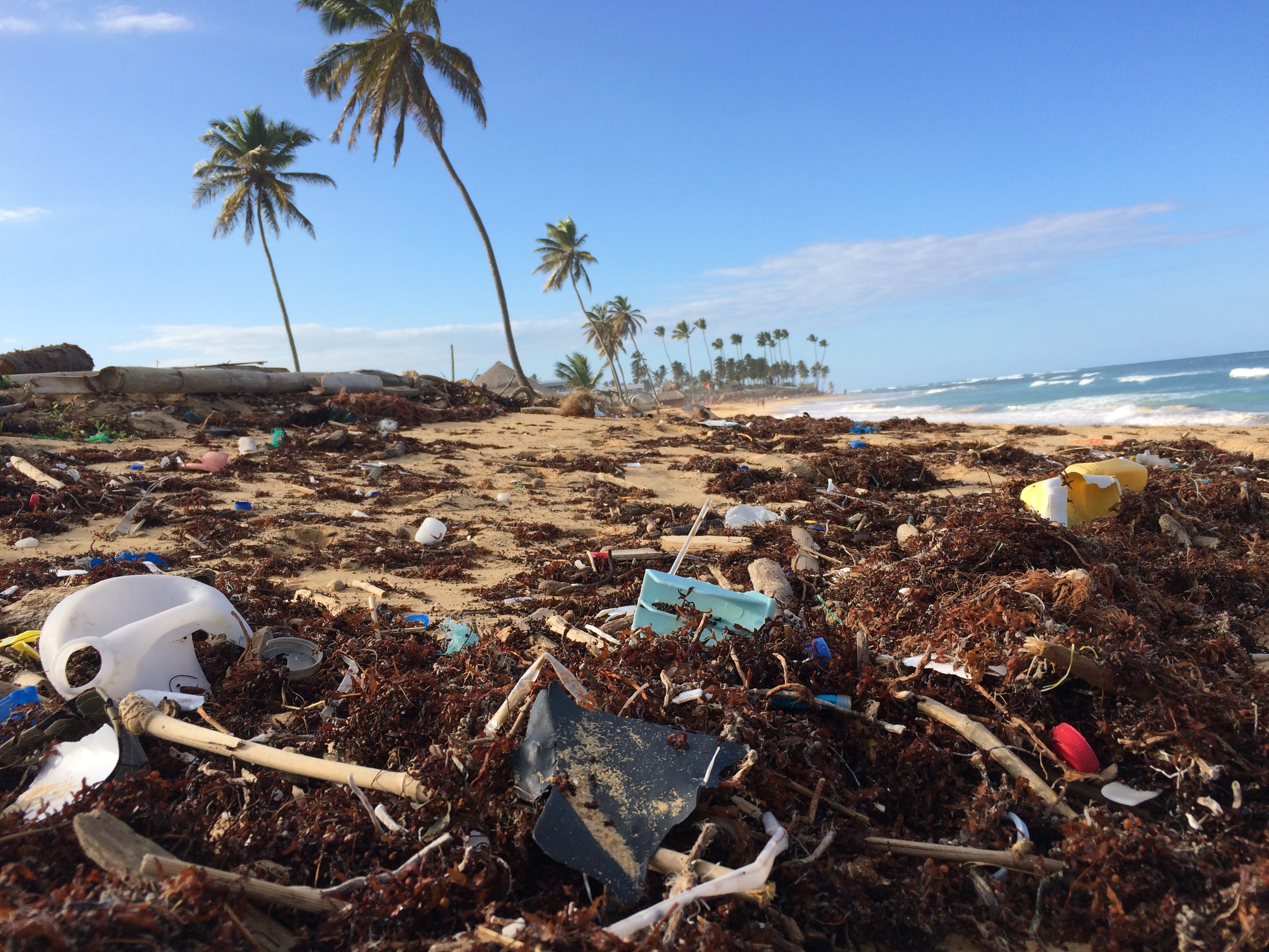 Plastic from Australia, China and Denmark ends up on Mexican shores